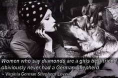 ...or German Shepherd mix, for that matter. Love you Beary