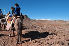 We're Hassan & Marjolein and we organize trips in enchanting Morocco. Join us on a Family trip - discover culture, mountains and beach