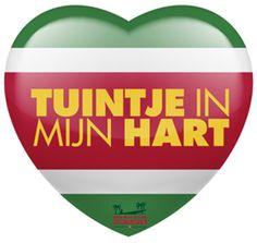 Tuintje in mijn Hart is een Nederlandse speelfilm die zich afspeelt in Suriname. Axel is een boeroe Surinamer die al 20 jaar in Nederland woont en volledig vernederlandst is. Als zijn moeder de familie bij elkaar roept voor Kerst gaat hij met vrouw en haar zus met tegenzin naar Suriname. TUINTJE IN MIJN HART wordt in januari 2017 in de bioscoop verwacht.