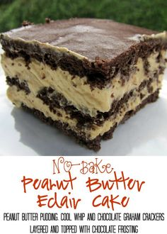 No-Bake Peanut Butter Eclair Cake Recipe - peanut butter pudding, cool whip and chocolate graham crackers layered and topped with chocolate frosting. It gets better the longer it sits in the fridge - it is just SO hard to wait to eat it. 13 Desserts, Delicious Desserts, Dessert Recipes, Yummy Food, Dessert Bars, Health Desserts, Baking Desserts, Cake Baking, Homemade Desserts