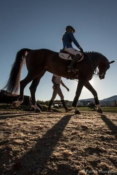 The rider and trainer have an understanding of each other. Their relationship is built on trust and respect, very similar to that of horse and rider.