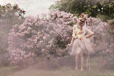 lilac | Aleah Michele