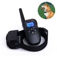 LittleStream cat Dog Cat Training Collar - Rechargeable Long Standby Remote and Rainproof Receiver with Flashlight and Back Light Screen 330 Yard For one dog Beep/Vibration/Shock modes -- Unbelievable cat item right here! : Cat Collar, Harness and Leash