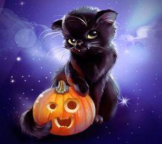 Halloween kitty & jackolantern.