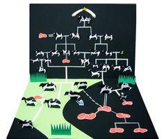 「牛相関図」