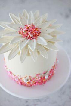 Chocolate Daisy Cake