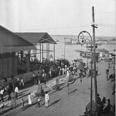 Lateral do Mercado Público Adolpho Lisboa. Manaus. Álbum do Amazonas 1901-1902.