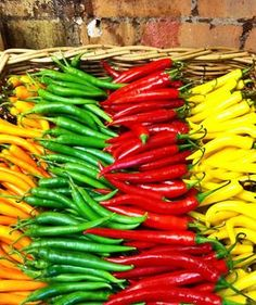 m a r k e t Hot chillies/pepeers/jalapeno Fresh Fruits And Vegetables, Fruit And Veg, Sante Bio, Vegetables Photography, Side Dishes For Bbq, Beautiful Fruits, Exotic Fruit, Stuffed Hot Peppers, Food Photography