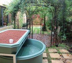 1000 images about aquaponic on pinterest aquaponics aquaponics