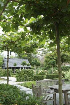 Contemporary Country Garden Tour (Modern Country Style)