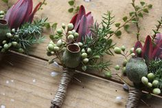 Swallows Nest Farm gum nut boutonniere with pittosporum berries, leucadendron, juniper and myrtle Prom Flowers, Bridal Flowers, Fall Flowers, Flower Bouquet Wedding, Floral Wedding, Bridal Bouquets, Green And Burgundy Wedding, Rustic Boutonniere, Boutonnieres