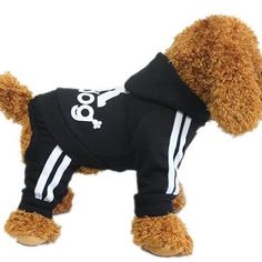 YAAGLE Pet Warm Sweater Hoodie Coat Sweatshirt Clothes Costume Apparel for Dog Puppy Cat,Black *** Check out the image by visiting the link. Dog Hoodie, Sweater Hoodie, Sweatshirt, Dog Diapers, Cloth Diapers, Dog Pajamas, Dog Store, Cat Sweaters, Small Puppies