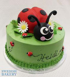 Ladybug Trail Children's Birthday Cake