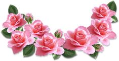 PNG Sector: Search results for rose Blush Roses, Pink Roses, Pink Flowers, Rose Images, Art Images, Rose Clipart, Petit Tattoo, Most Popular Flowers, Rose Decor