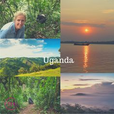 This week we are headed to Melanie's top 5 must do locations starting with Uganda. Melanie says it's an absolute must, one of the most spectacular places she's ever seen. Group Travel, Travel Agency, Holiday Travel, Perth, Uganda, Amazing, Places, Top, Lugares