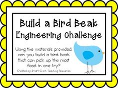 Build a Bird Beak: Engineering Challenge Project ~ Great STEM Activity!  Using the materials provided, can you build a bird beak that can pick up the most food in one try?  $