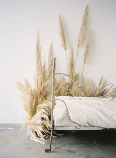 stunning vintage bed & Pampas Grass....?..<3