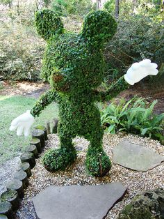 Mickey Mouse Topiary by traveling around, via Flickr