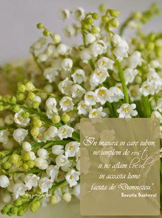 qoutes about love life sense Savatie Bastovoi Flower Qoutes, Coffee Gif, Qoutes About Love, True Words, Beautiful Words, Love Life, Gods Love, Cool Words, Pray