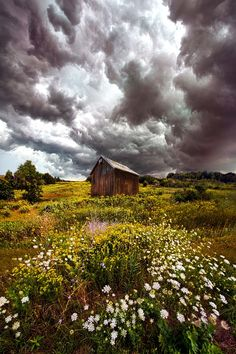 Storms of Bygone Summer Days by Phil Koch on 500px