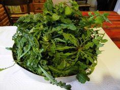λαχανα Cabbage, Greek, Herbs, Vegetables, Food, Facebook, Lettuce Recipes, Salads, Greek Language