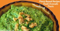 Having difficulty finding an oil-free pesto? Chef Katie Mae has you covered with this Basil Avocado Pesto! You never have to miss out on pasta night again! Avocado Recipes, Raw Food Recipes, Cooking Recipes, Healthy Recipes, Vegetarian Recipes, Snack Recipes, Plant Based Eating, Plant Based Diet, Plant Based Recipes