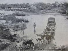 Safarious - Southern and Northern Rhodesia Archive photos / Andy Hogg / Gallery Victoria Falls, Out Of Africa, Seasons Of The Year, Folk Music, Zimbabwe, Archaeology, Wilderness, Adventure Travel, South Africa