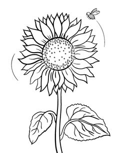 Printable sunflower coloring page. Free PDF download at http://coloringcafe.com/coloring-pages/sunflower/.