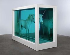 """""""The Dream"""" an installation by Damien Hirst"""
