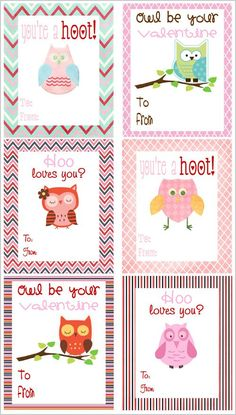 17 best images about owl theme on owl labels owl name tags and toolbox labels