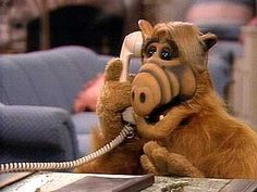 'Alf' - I loved this TV show. It was so the funny. And the film 'Project Alf' was great too. Donald Tramp, Arnold Et Willy, Alf Doll, Pixar, Kickin It Old School, Back In My Day, Old Tv Shows, My Childhood Memories, School Memories