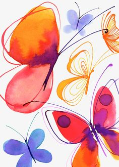 Margaret Berg Art : Illustration : butterflies / insects