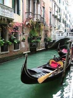 Gondolas, Venice, Italy  photo via low