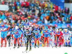 Die Meute jagt den Fuchs: Der Schweizer Dario Cologna (M) führt beim Skiathlon über 2 x 15 Kilometer bei der WM in Val di Fiemme das Feld der Langläufer an. (Foto: Srdjan Suki/dpa)