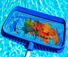A swimming pool requires regular pool maintenance to extend the life of the pool. Here are some DIY pool maintenance tips to keep your pool in tip-top shape. Pool Cleaning Service, Pool Service, Pond Cleaning, Cleaning Services, Cleaning Tips, Diy Pool, Pool Spa, Riverside Pool, Tips