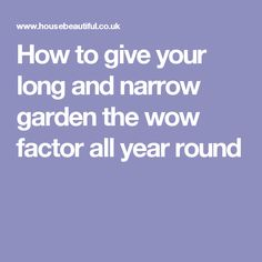 How to give your long and narrow garden the wow factor all year round Helicopter Parent, Narrow Garden, All Year Round, Lose Your Mind, Wow Factor, Back Gardens, Wow Products, Giving, Parenting