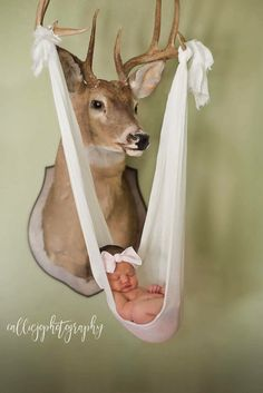 Cool idea for newborn pictures