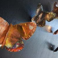 Farfalla Aurora in diverse dimensioni _ Rame e acciaio con diverse lavorazioni