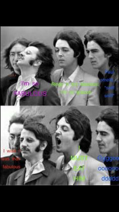 Beatles Meme, The Beatles, Love Band, Cool Bands, The Quarrymen, The Fab Four, Band Memes, Yellow Submarine, Ringo Starr