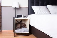 Are you have a lovely pet to your house then this is the best list for you. Check 50 unique pet-friendly interior designs for pet owners for their adorable pets rest places. Puppy Beds, Dog Bed, Dog Furniture, Furniture Design, Cool Dog Houses, Cat Hammock, Diy Stuffed Animals, Pet Gifts, Interior Design