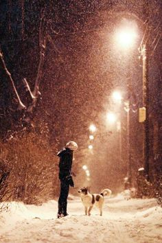 Love going for walks while it is snowing--there is a peaceful feeling about it