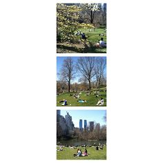 Photo reel of spring in Central Park.