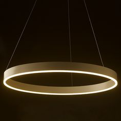LED circle pendant is an aluminium and acrylic pendant that would suit a feature light situation. Round Crystal Chandelier, Circle Chandelier, Globe Lights, Light Globes, Circle Light, Edison Lighting, Living Room Lighting, Light Fittings, Strip Lighting