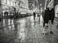 Night Life 2013 © Marcelle Cestoni