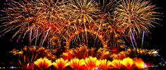 London's New Year's Eve Fireworks 2019 Happy New Year Quotes, Quotes About New Year, New Years Eve Fireworks, Lady And Gentlemen, Vineyard, Animation, London, Celebrities, Flowers