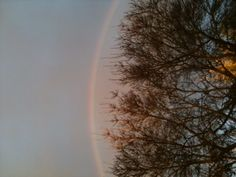 Rainbow over trees, taken at Clunes, Victoria Australia