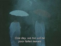 365 days. 365 films.
