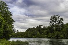 Waikato River From The Gardens