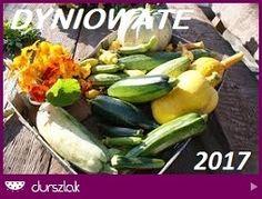 Warzywa dyniowate 2017