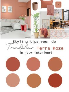 Trend color Terra Pink in the living room - The latest trend color from styling tips and inspiration for the Terra Pink color on the wall -